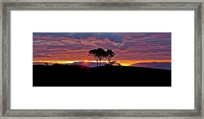Delightful Awakenings Framed Print by Az Jackson