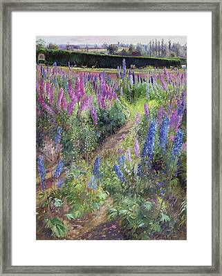 Delphiniums And Hoers Framed Print by Timothy Easton