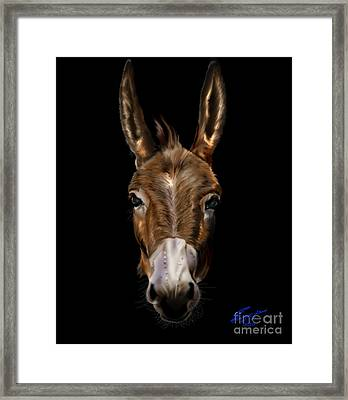 Dem-donkey Framed Print by Reggie Duffie