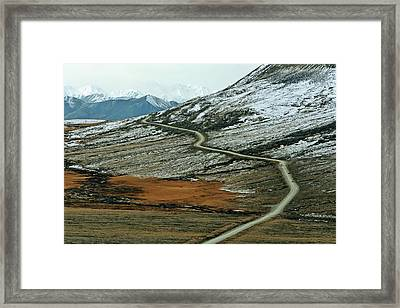 Denali Road 3 Framed Print by Marty Koch