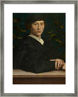 Derich Born Framed Print by Hans Holbein the Younger