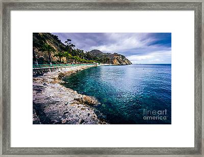 Descanso Bay Catalina Island Picture Framed Print by Paul Velgos