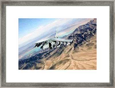 Desert Fox Harrier Framed Print by Peter Chilelli