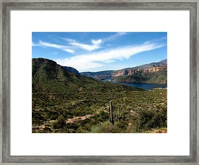 Desert Oasis Framed Print by Andrea Arnold