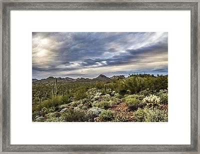Desert Skies Framed Print by Chuck Brown
