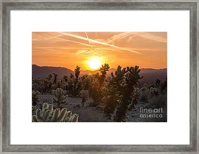 Desert Sunrise Framed Print by Juli Scalzi
