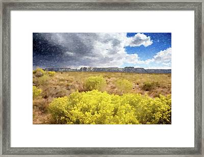 Desert Yellow Flowers Framed Print by Gary Grayson
