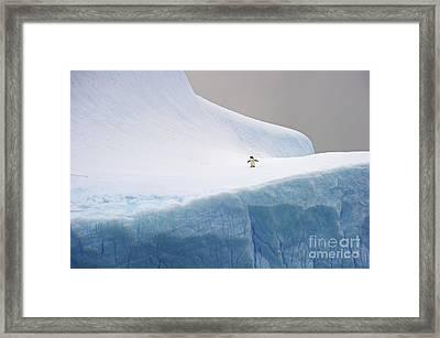 Desolation... Framed Print by Nina Stavlund