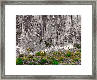 Defending Nature's Castle Framed Print by Michael Bergman