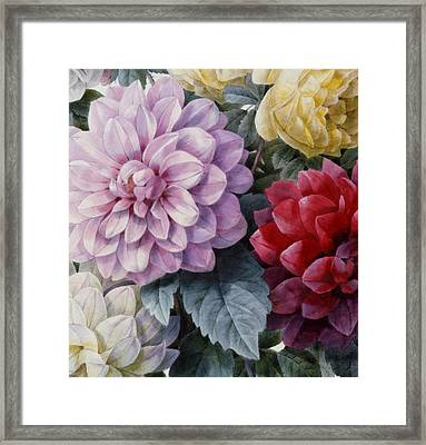 Detail Of Dahlias And Roses Framed Print by Camille de Chantereine