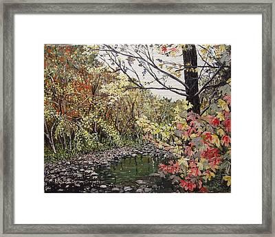 Devil's Den In Fall Framed Print by Sharon  De Vore