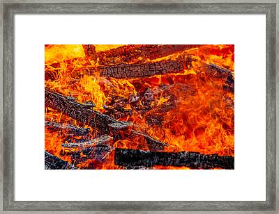 Devouring The Remains Framed Print by Todd Klassy