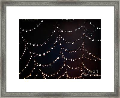 Dew Pearls Framed Print by SK Pfphotography