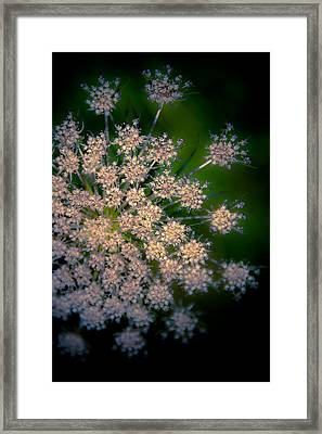 Diamonds Are Forever Framed Print by Loriental Photography