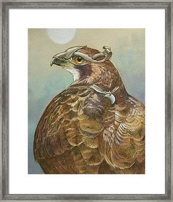 Diana Framed Print by Tracie Thompson