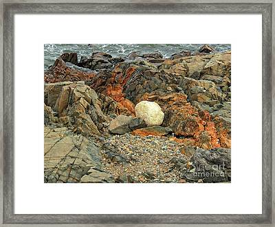 Different Is A Good Thing Framed Print by Marcia Lee Jones