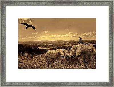Dignified Rank Framed Print by Lourry Legarde
