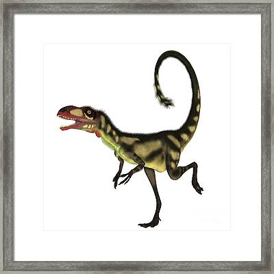 Dilong Dinosaur Profile Framed Print by Corey Ford