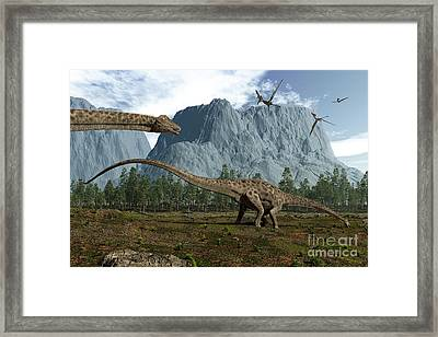 Diplodocus Dinosaurs Graze While Framed Print by Walter Myers