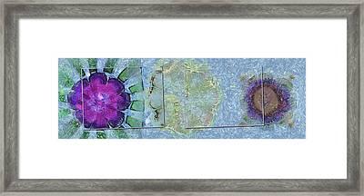 Displumed Castle In The Air Flower  Id 16164-220135-95591 Framed Print by S Lurk