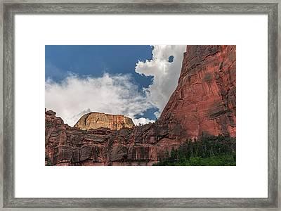 Divine View Framed Print by Loree Johnson
