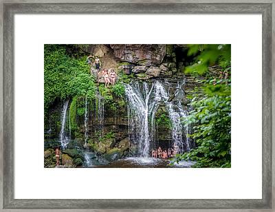 Diving At Akron Falls Framed Print by Carlos Ruiz