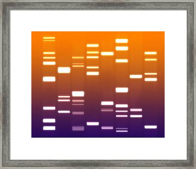 Dna Purple Orange Framed Print by Michael Tompsett