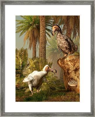Dodo Hide N Seek Framed Print by Daniel Eskridge