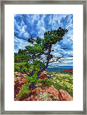 Doe Mountain Pinyon Framed Print by Bill Caldwell -        ABeautifulSky Photography