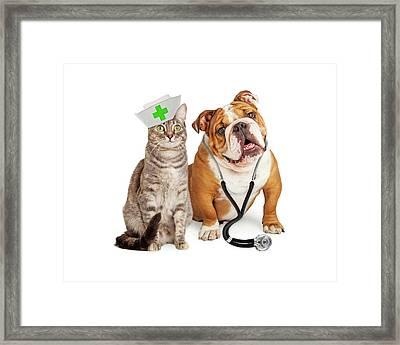 Dog And Cat Veterinarian And Nurse Framed Print by Susan Schmitz