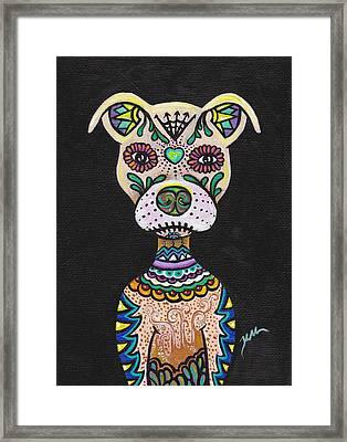 Dog Candy Framed Print by Kelly Morgan