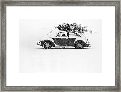 Dog In Car  Framed Print by Ulrike Welsch and Photo Researchers