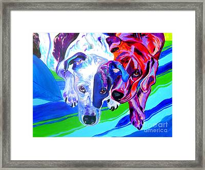 Dogs - Tango And Marley Framed Print by Alicia VanNoy Call