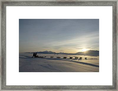 Dogsledge, Northern Greenland Framed Print by Louise Murray