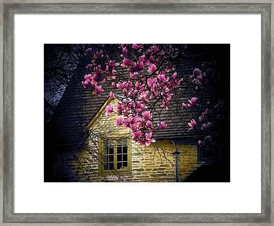 Dogwood By The Window Framed Print by Joyce Kimble Smith