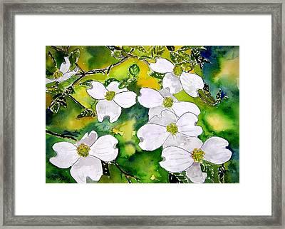 Dogwood Tree Flowers Framed Print by Derek Mccrea