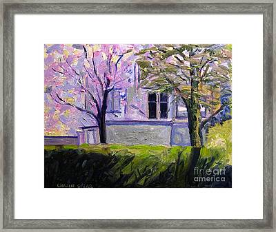 Dogwoods And Mimosa In Bloom Framed Print by Charlie Spear