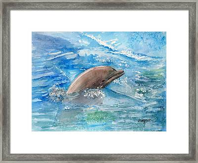 Dolphin  Framed Print by Arline Wagner