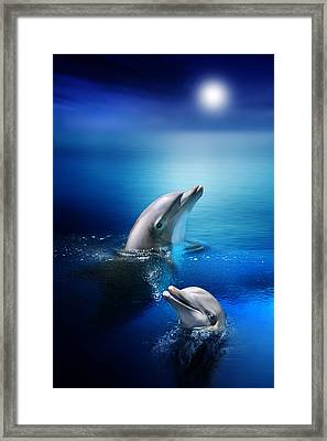 Dolphin Delight Framed Print by Julie L Hoddinott