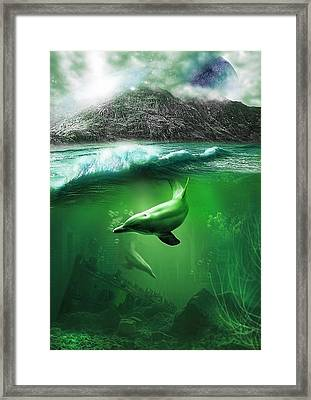 Dolphins Framed Print by Svetlana Sewell