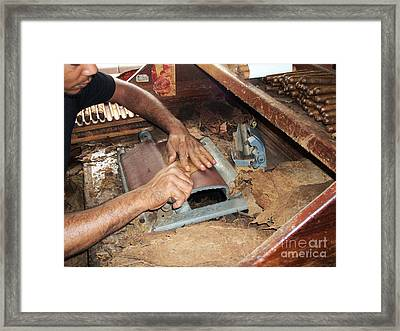Dominican Cigars Made By Hand Framed Print by Heather Kirk