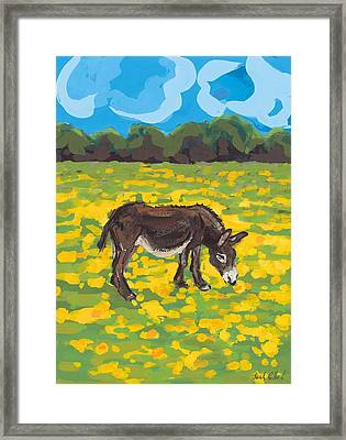 Donkey And Buttercup Field Framed Print by Sarah Gillard