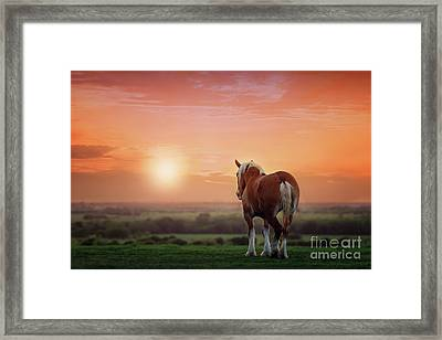 Don't Let The Sun Go Down On Me Framed Print by Tamyra Ayles