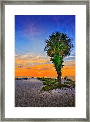 Don't Miss It Framed Print by Marvin Spates