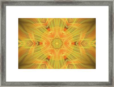 Double Star Abstract Framed Print by Linda Phelps