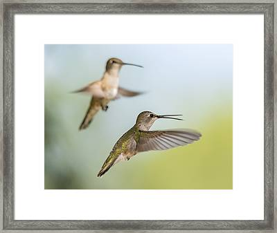 Double Trouble Framed Print by Loree Johnson