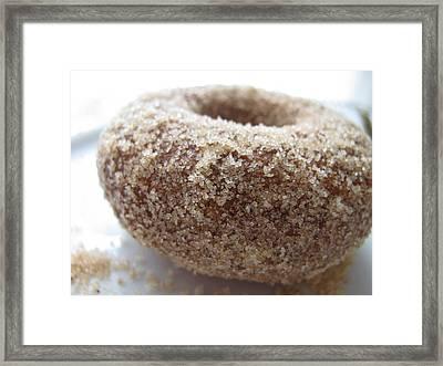 Doughnut Love Framed Print by Lindie Racz