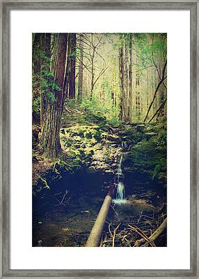 Down At The Old Dam Framed Print by Laurie Search