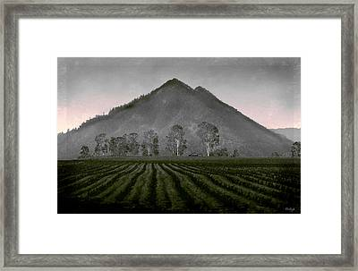 Down From The Mountain Framed Print by Holly Kempe