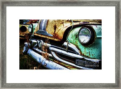 Down In The Dumps 1 Framed Print by Bob Christopher